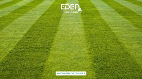 semina e manutenzione prati e campi sportivi